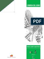 L'energia del legno.pdf