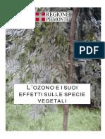 L'ozono e i suoi effetti sulle specie vegetali.pdf