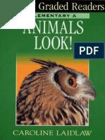60163448-DK-Animals