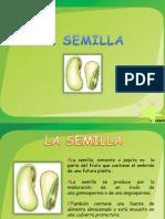 La Semilla