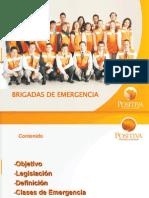Brigadas de Emergencia - Positiva 2009 (19 Diapositivas)