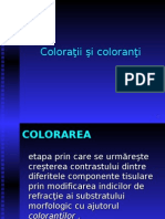 Coloratii-1 lp3