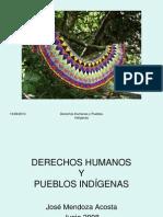 Derecho Humano y Derecho de Los Pi 1212684181396685 8