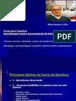 Lâminas Bandura - PSI 100