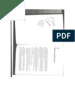 DIREITO CONSTITUCIONAL[1]