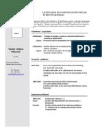 modelo de currículum profesional