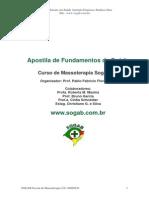 apostilaprincipalfundamentodesaude.pdf
