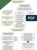 El Derecho a La Vida y La Interrupcion Voluntaria Del Embarazo, Saenz