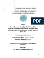 Tesis Nivel de conocimientos y Significado concedido al Programa CRED  Lunahuaná1