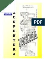 bexiga.pdf