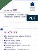 GLUCOLISIS1