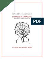 CUADRO PARA ANÁLISIS DE TEORÍAS (CAPA)