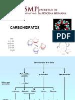 Practica Carbohidratos 2010