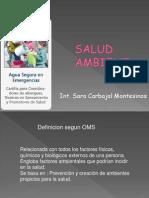 saludambientalyprogrmadesaneamientoambiental-090615115022-phpapp01
