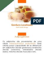 Gordura+Localizada+ +Camila+1 (1)