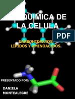 Bioquimica de La Celula