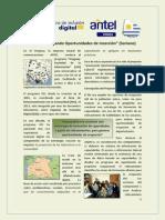 """Programa USI - Proyecto """"Creando Oportunidades de Inserción"""" (Soriano)"""