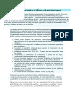 Uso de los ácidos húmicos y fúlvicos en la nutrición vegetal