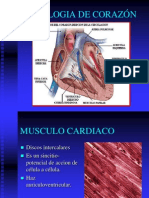 2-fisiologia-de-corazn-1218751972417535-9