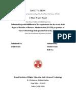 Minor Report Guidelines2012