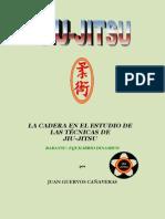 i-dojo.herobo.com_jiujitsu_Tesina_5Dan_Jiu-Jitsu.pdf