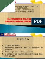 FENOMENO BACRIM 2010