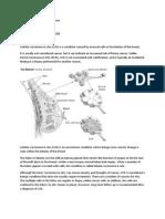 neurotransmitter biochemical