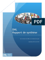DNL Rapport de Synthèse
