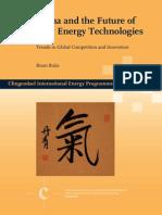 201203_ciep_paper_buijs_china_future_new_energy_technologies.pdf