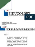 fiducoldex- diapos