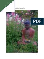 Buddha in Pink