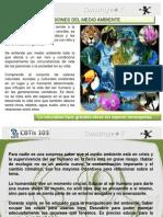 Dimension Ecologica