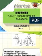 BQ_13_CH_Metabolismo de glucógeno