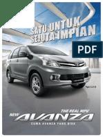 Leaflet Avanza Mi 2013
