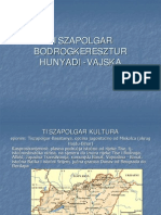 TISZAPOLGAR-BODROGKERESZTUR_2008