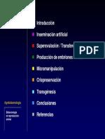 C11 Biotecnologia de La Reproduccion Animal