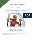 Roteiro_Anatomia-Nutrição