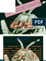 ONCOCERCOSIS. DIAPSO (2)