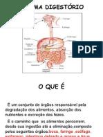 Sistema Digestorio 68N