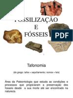 APRESENTAÇÃO DE PALEONTOLOGIA