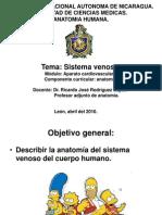 Sistema Venoso.