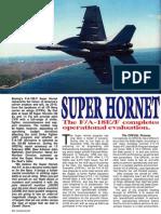 FA-18 EF Super Hornet - Combat Aircraft