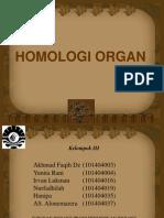 homologi organ.....pdf