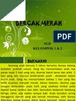 BERCAK MERAH