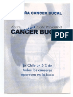 Material Educativo Contra El Cancer Bucal