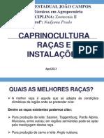 RAÇAS CAPRINAS.pptx