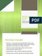 Kelainan Pada Sel Reseptor Hormon Insulin Pbl Blok 4