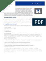 10gen Consulting Datasheet
