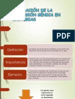 REGULACIÓN DE LA EXPRESIÓN GÉNICA EN BACTERIAS!!