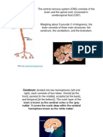 Consciousness Experiments